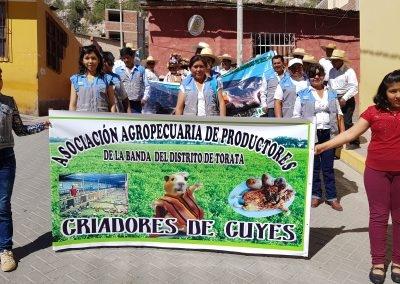 Desfile por le día del campesino Asociación La Banda, ganador del proyecto concursable de Southern Perú distrito de Torata.