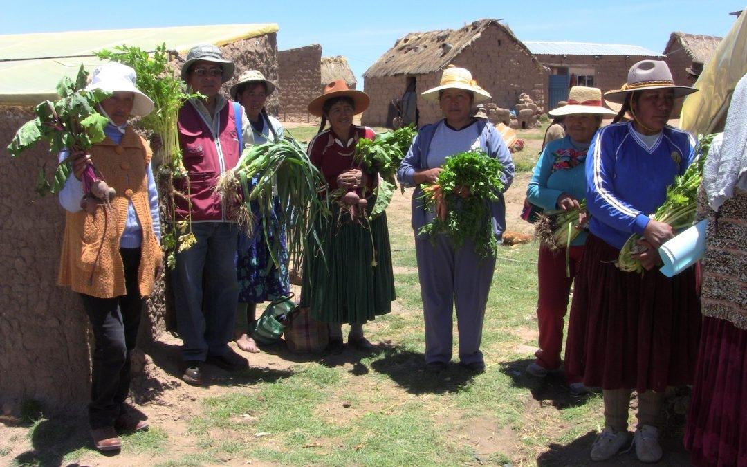 """Desarrollo productivo de comunidades andinas Fase III"""" PER 73859, 2019"""