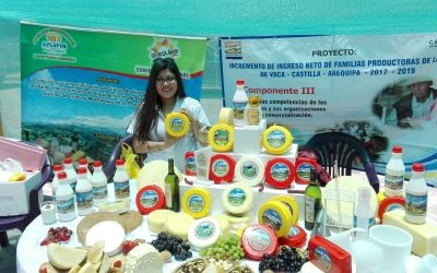 Incremento del ingreso neto en familias productores de leche de vaca – Castilla- Arequipa (2017 al 2019)