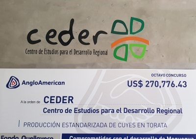 Cheque simbólico del proyecto a ejecutar
