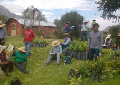 Fortalecimiento de capacidades en Producción de frutales (palto) en el anexo de Arhuim, Taparza y Aguasana