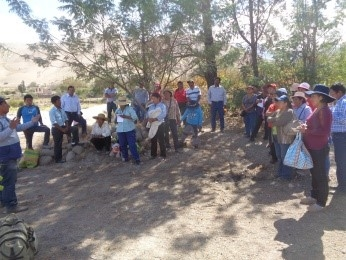 Pasantía guiada a productores de Moquegua proyecto apicultura con el taller